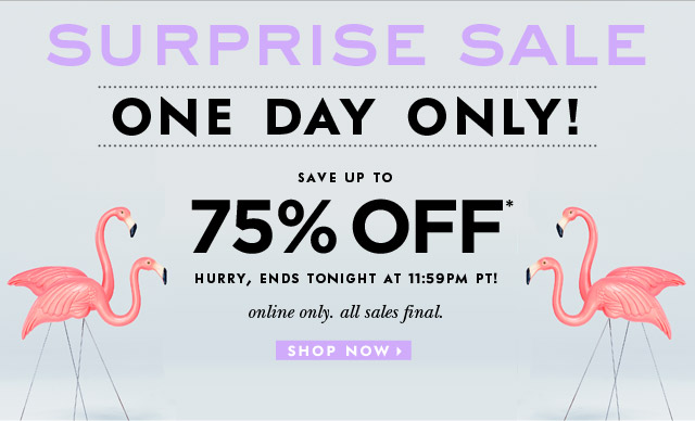 surprise sale. one day only. save up to 75 percent off. hurry, ends tonight at 11:59pm pt. online only. all sales final. shop now.