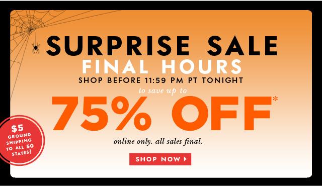 surprise sale final hours. shop now.